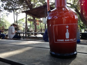 New growler visits Salt Lick